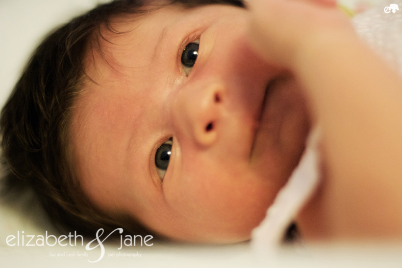 Baby Olivia Newborn Session