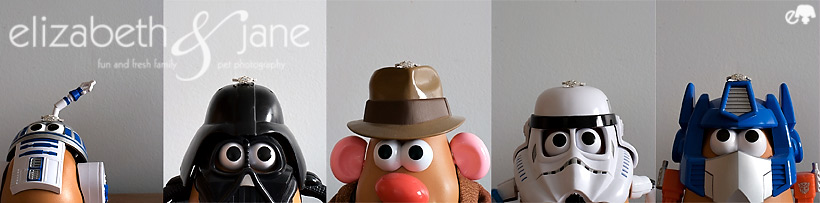 Mr. Potato Head Ring Series