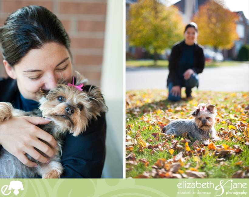 Dog photo: Yorkie with owner
