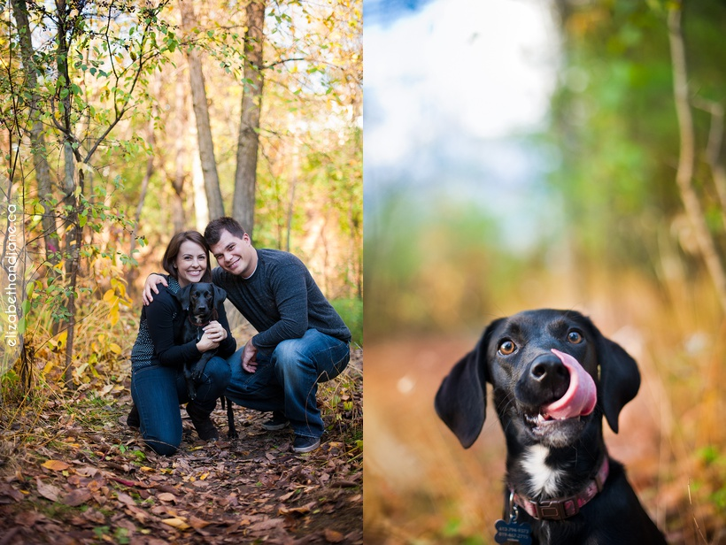 Ottawa dog photographer elizabethandjane bailey sneakpeek 06