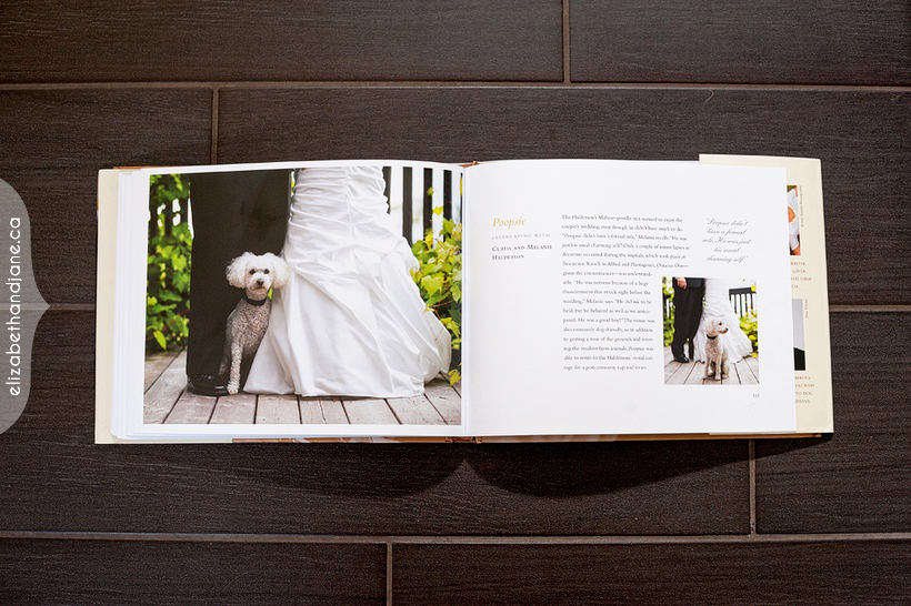 Published in Wedding Dogs 04