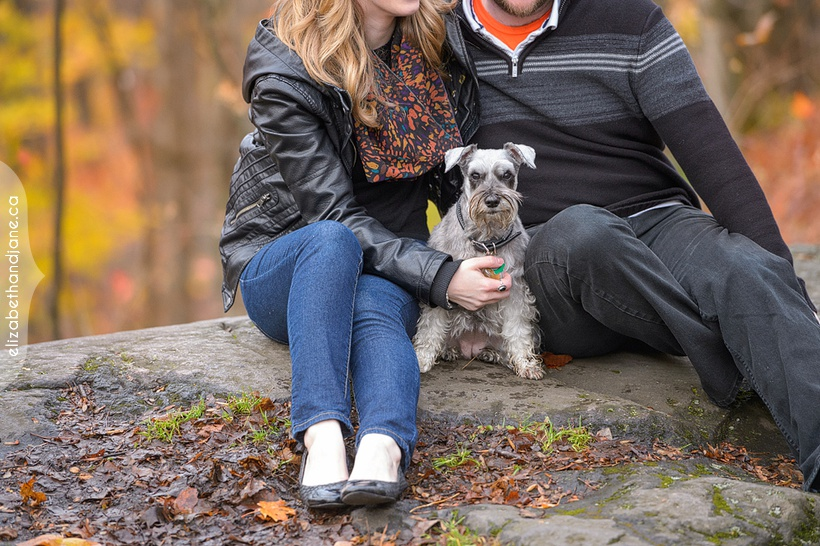 Alayna & Ben Engagement photographed in Ottawa by Liz Bradley of elizabeth&jane photography