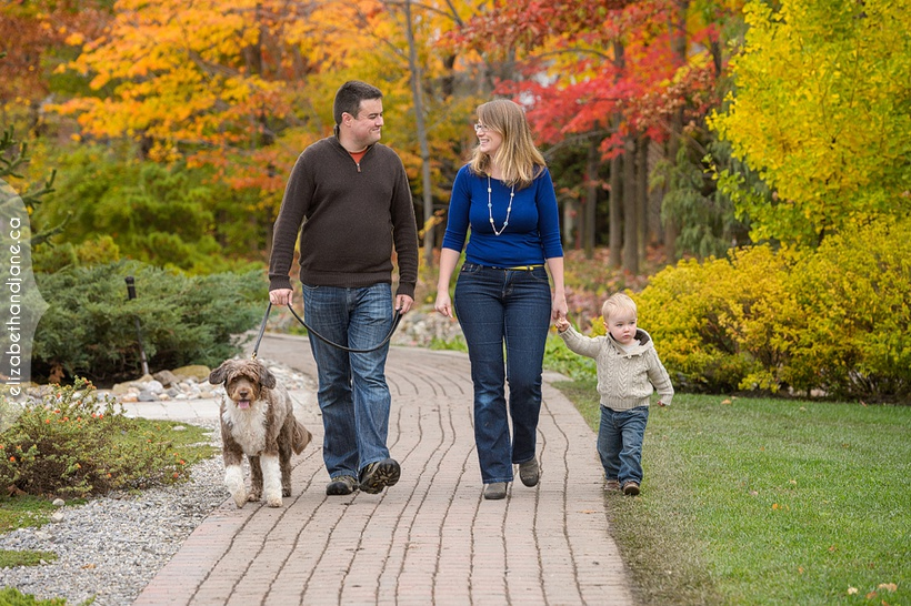 Audrey, Francois, Oliver & Clio the Dogs photographed in Ottawa by Liz Bradley of elizabeth&jane photography