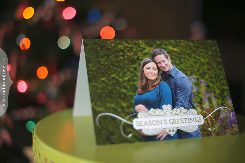 Fiona & Derek Mini Session Holiday Cards photographed in Ottawa by Liz Bradley of elizabeth&jane photography
