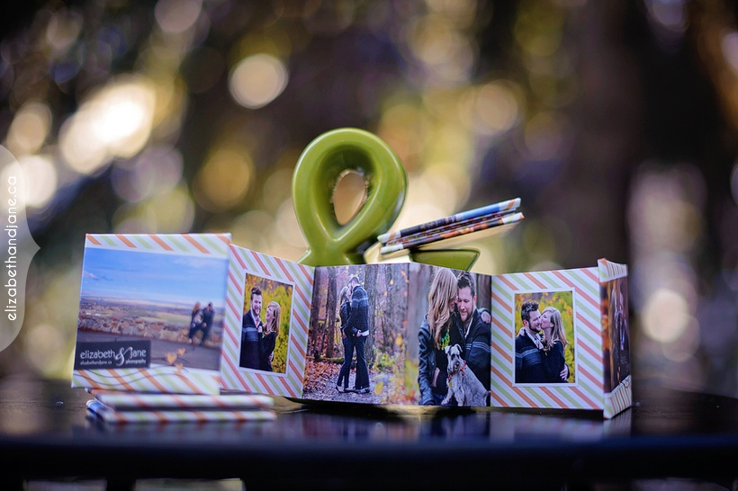 Alayna and Ben's Mini Books photographed in Ottawa by Liz Bradley of elizabeth&jane photography