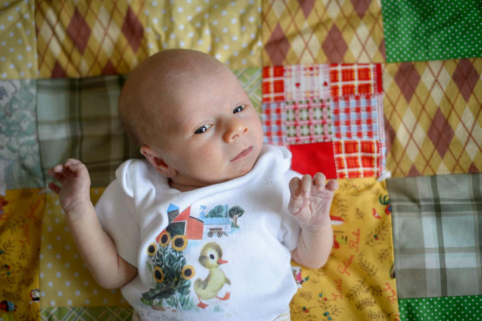 Newborn-Ronan-090