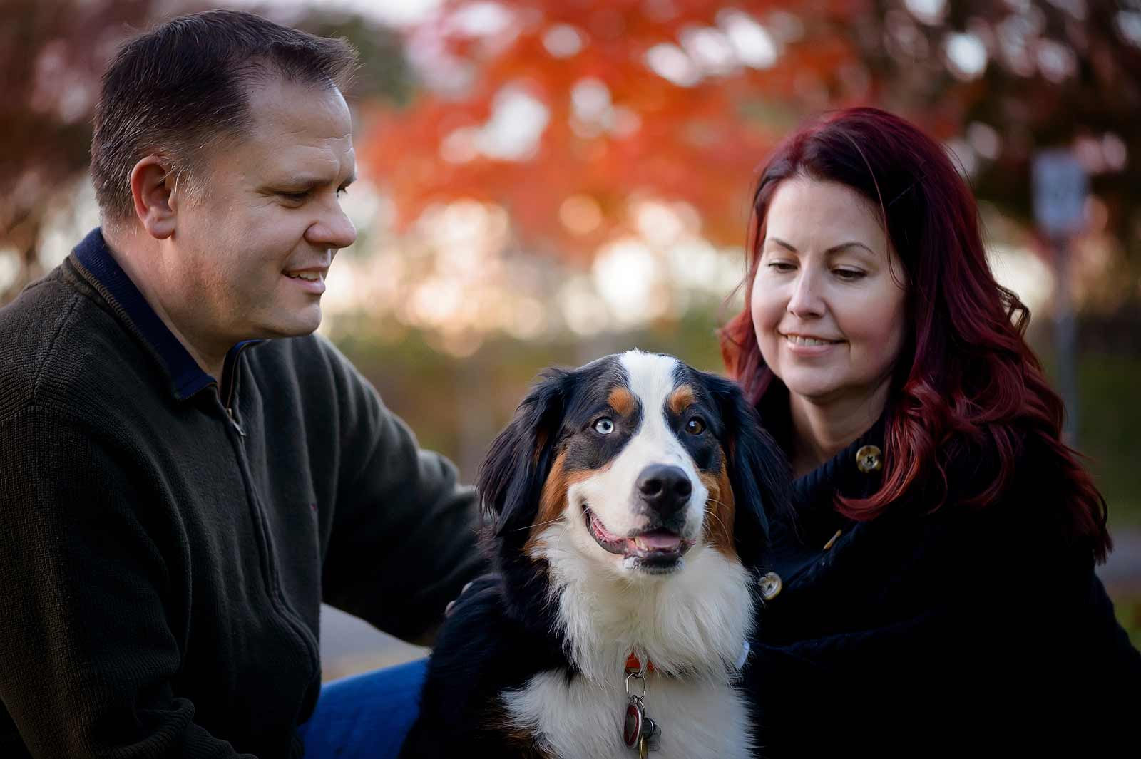 Ottawa Dog Photographer Princess Leia the Bernese mountain dog at Lemieux Island with his owners in the fall