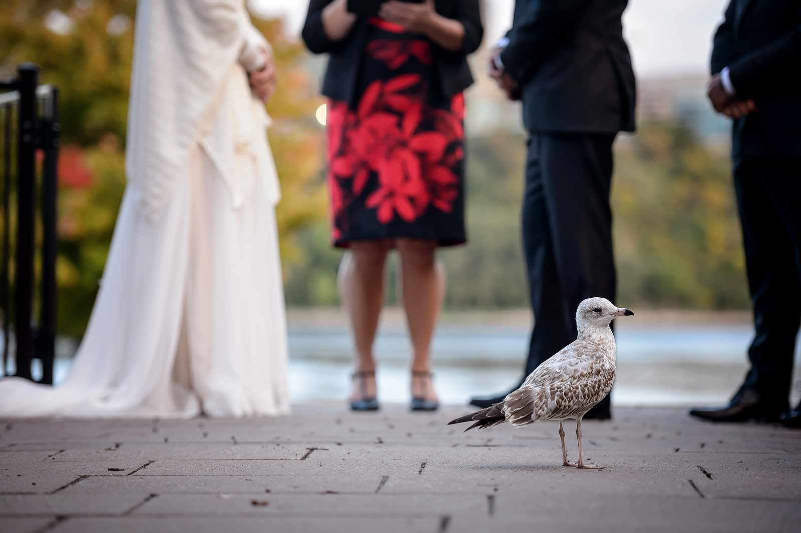 victoriacalvin-wedding-sneakpeek-12