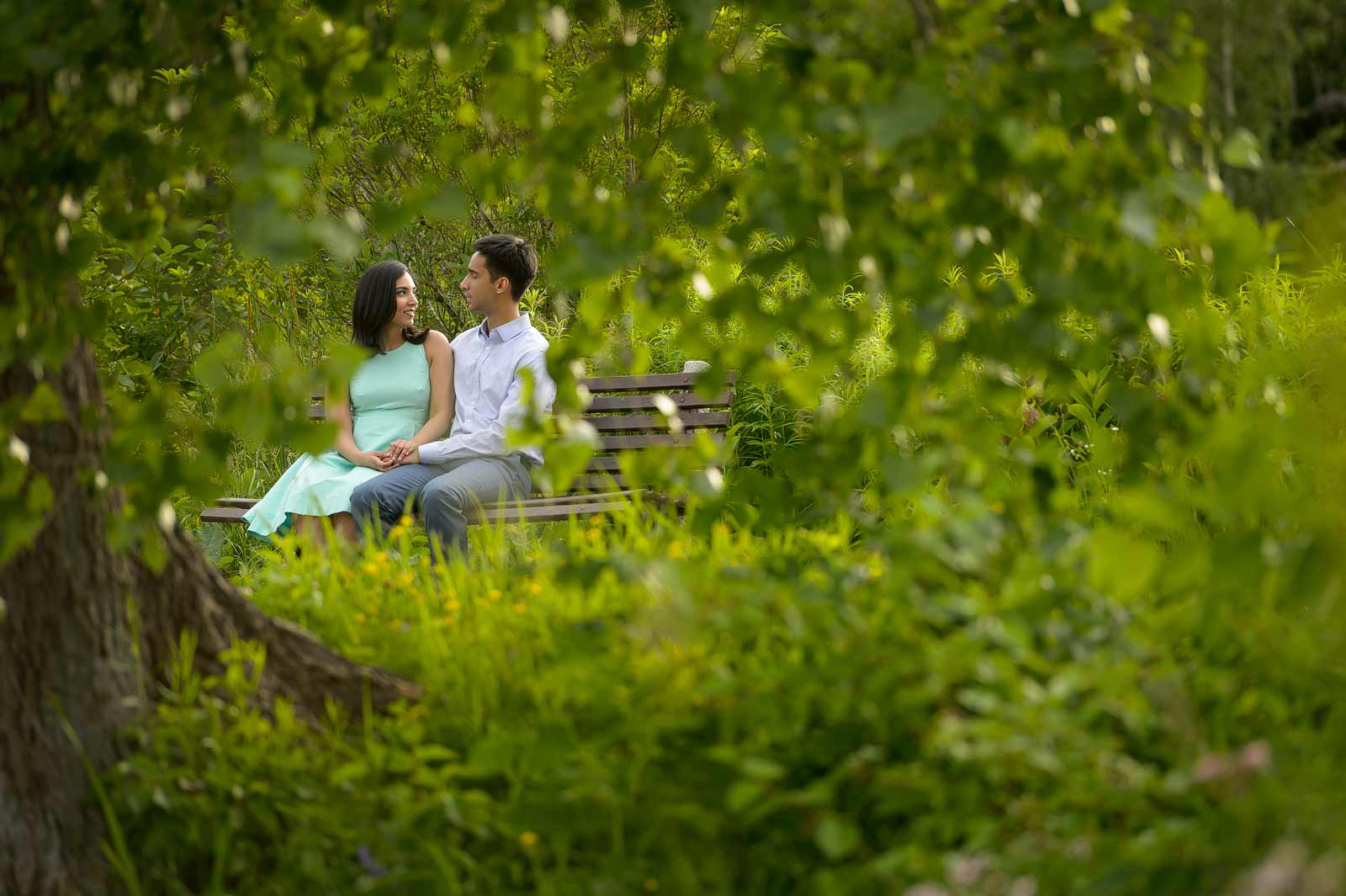 Engagement session at Dow's Lake in Ottawa with the couple sitting on a bench surrounded by beautiful greenery