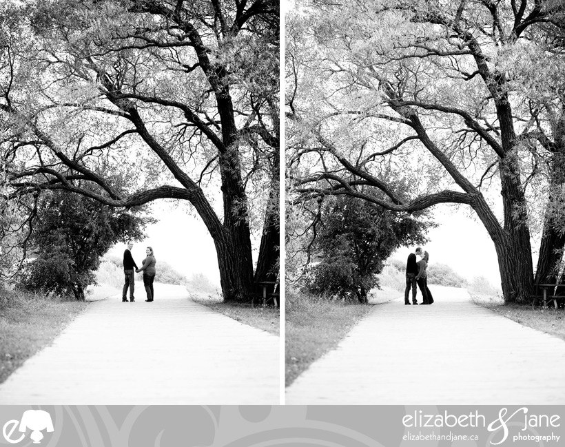 Engagement photo: couple under a huge tree